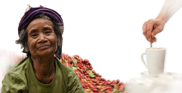 Fair-trade|Direct-trade coffee, Vietnam. Oriberry